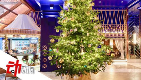 1.1亿元全球最贵圣诞树!挂满钻石宝石黄金钞票