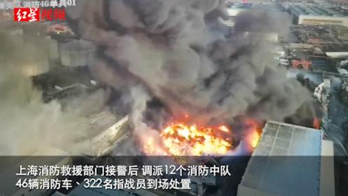 上海一粮油公司突发大火:火势已得到控制 无人员伤亡