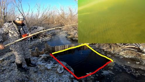 河面冰封,一个冰洞意外打到鱼窝,一天能搬上百斤野鱼