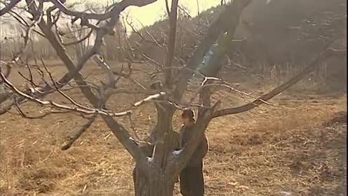 霍元甲:陈小春对着树说话!说那么大声谁听不到啊