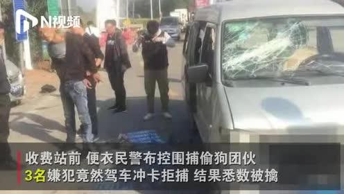 便衣民警围捕偷狗团伙,3名嫌疑人冲卡拒捕