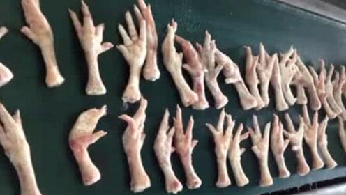 一只鸡只能有两个爪子,为何鸡爪能供应不断?看完你还敢吃吗?
