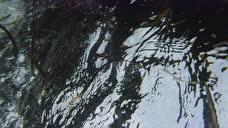 菲律宾卡加延圣安娜巴拉屿Palaui岛浮潜1