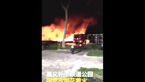 嘉义新春第三烧 铁道公园因燃放烟花着火