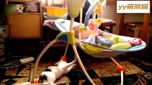 喵星人晃动摇篮哄萌宝宝入睡,有这样的哄娃小助手,妈妈高兴坏了