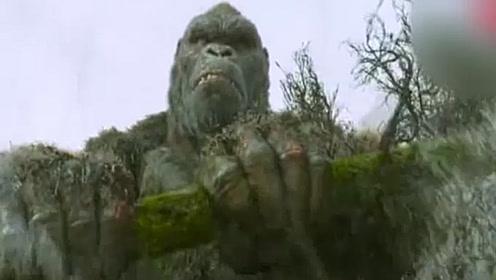 大猩猩拔树当金箍棒,只为救她,这特效根本看不出是特效