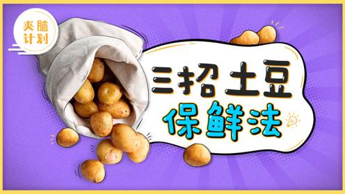 教你3招实力土豆保鲜法 厨房小帮手就是你