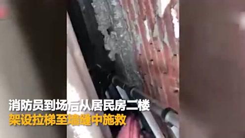 江苏昆山一女子救猫反被困 消防架梯营救