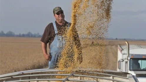 特朗普新一轮加征关税引来美国农民开会反对:贸易战中没有赢家