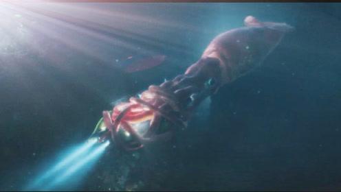 美女下潜海底救援,遇巨型乌贼袭击,险些遇难!