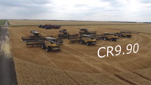 7台纽荷兰联合收割机收割5490亩小麦,国外农场都是这么收割的?