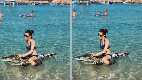 陈赫前妻许婧开启暑期度假模式 身穿比基尼骑鳄鱼胆量惊人
