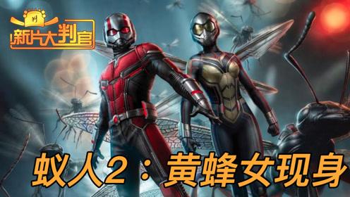 新片大判官速看《蚁人2》:小英雄组团大冒险