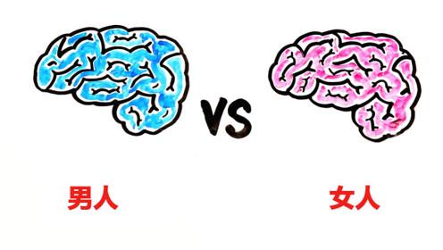 男生和女生,智商一样吗?脑子结构竟然都不一样!