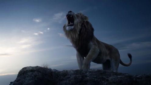 《狮子王》全球首支先导预告片 年度巨制王者归来