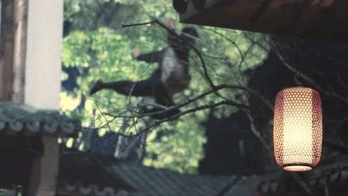 盗门第一高手赛狸猫现身 欲盗珍宝