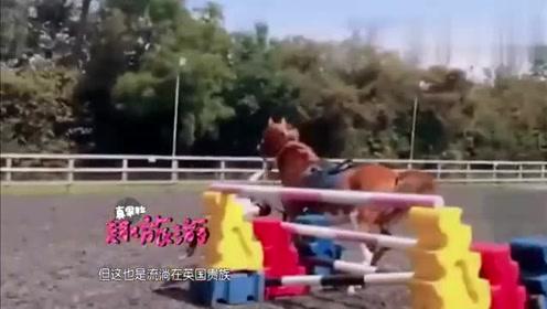 """同穿骑马装,宁静最好看,毛阿敏是来""""搞笑""""的!"""