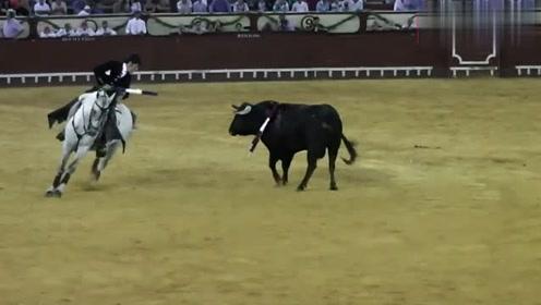 斗牛场上,斗牛士骑在马上不住挑衅,愤怒的斗牛直接上去顶撞