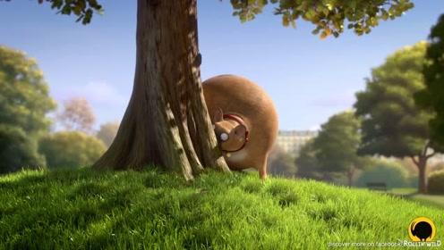 国外创意萌趣动画短片:圆滚滚的动物2
