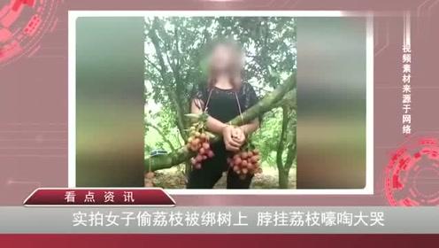 实拍女子偷荔枝被绑树上脖子上挂荔枝嚎啕大哭场面令人哭笑不得