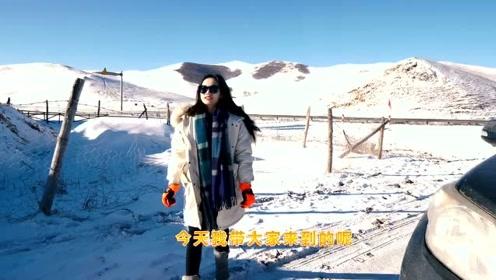 《越野女孩的私人厨房》开普拉多在-25度上雪山挑战烹饪牛排