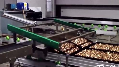 科技探秘:种植蔬菜都是全自动化了,还是无土种植!这技术实在牛