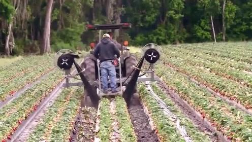 盘点那些在农场发挥具大作用的奇葩机械,网友:又长见识了