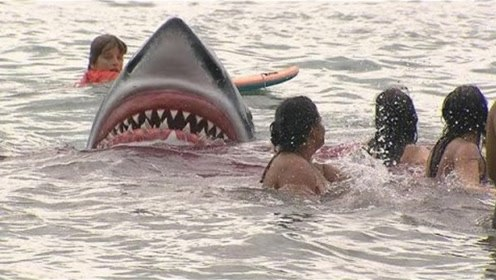 """老外深海中上演""""鲨来了""""!一旁游客四散而逃,场面一度非常混乱"""