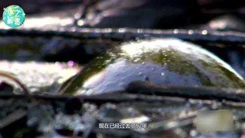 持续将近100年的实验:沥青滴落实验,究竟为了研究什么?