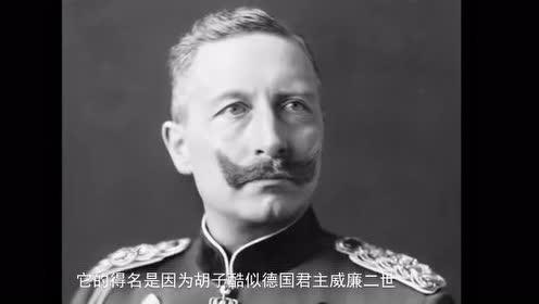 它的名字,来源于身体的一部分和德国君主雷同