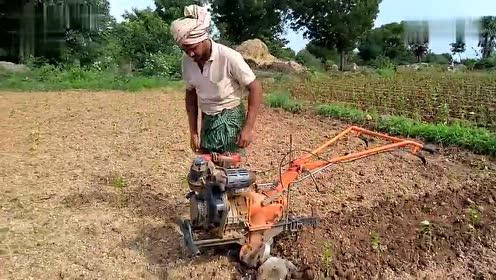 农村发明的小型耕地机,马力十足,最适合贵州的小块地使用