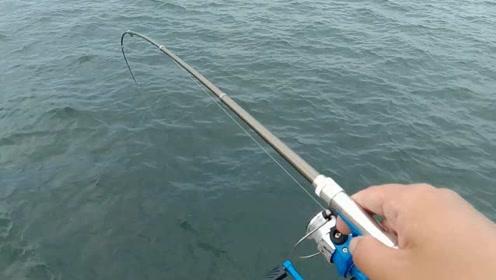 袖珍型钢笔鱼竿海边小测,没想到真能钓上鱼啊!
