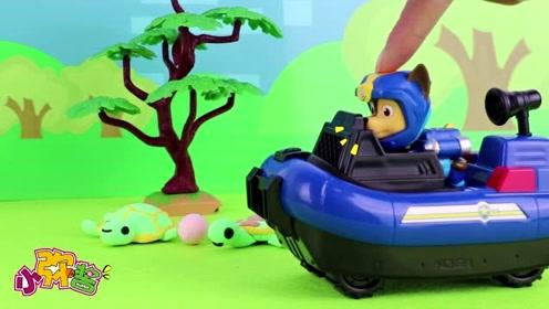 阿奇帮助乌龟爸爸将小乌龟蛋安全运到沙滩 等待小乌龟的出生