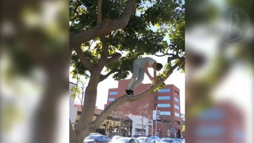 不一样的空中跳跃,男孩儿站在树上,跳下时做着空翻的动作
