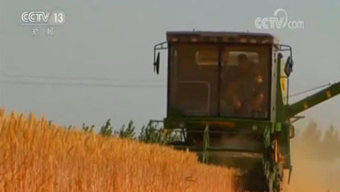 上半年农民人均可支配收入增长6.6%