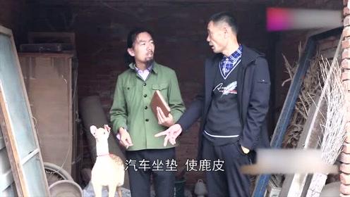 小孙来请教老高养羊,老高却准备养鹿了,真搞笑