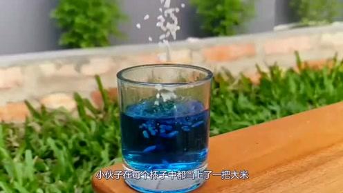 看完这一组实验,简直不敢再喝饮料了!