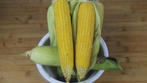 玉米好吃有技巧,牢记这3点,玉米个个香甜软糯,点赞!