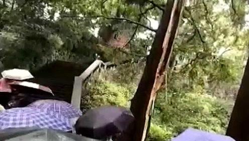 江西庐山风景区多名游客遭雷击 9人送医2人伤势较重