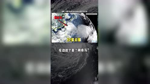 """5张图带你看懂台风""""利奇马"""""""