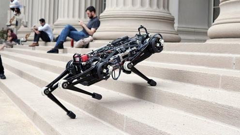 三个人类发明的先进机器人动物