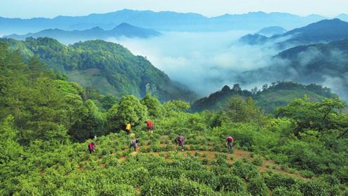 中国最适合养老的地方,空气清新风景美,80元一天还包吃住