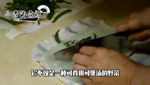 """农村一种野草,人称""""明目王""""晒干后一斤30元,煮水喝清热解毒"""
