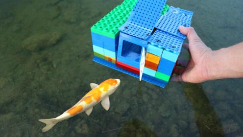 不用钓鱼竿也能钓鱼?老外发明新方法,看完你就明白了!