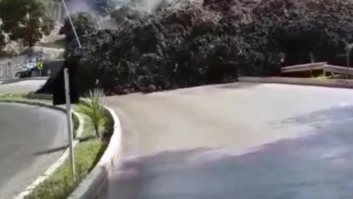 老外正在路上行走,突然发现山坡不对劲,下一秒令人惊讶!