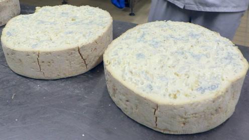 发霉的奶酪也能吃?外面全都是霉菌却销量第一,这是啥味道