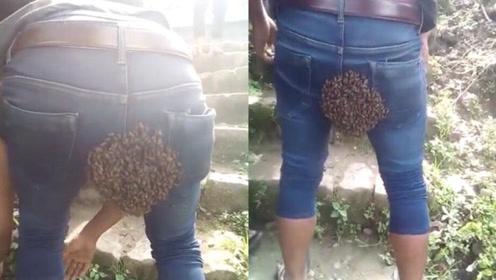 活久见 一群蜜蜂在男子牛仔裤后面筑巢