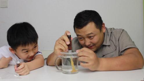 """父子第一次喝""""冷萃咖啡""""被冲泡方式吓到了 每口都是人民币味道"""
