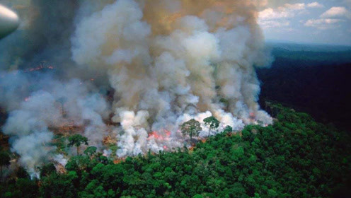 该来的还是来了:外媒竟将亚马逊大火的锅甩给了中国!
