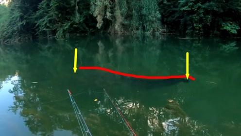 原始大野河,大鱼好像不怕人,2米长的巨物完全不把钓鱼人当回事